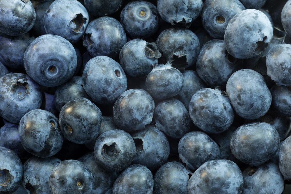 blueberries Health Food Store Tour: Fruits